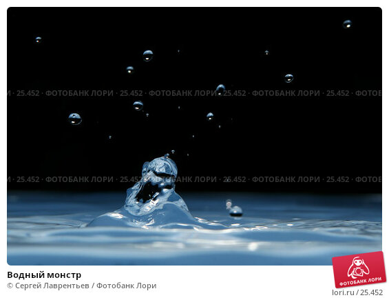 Водный монстр, фото № 25452, снято 12 января 2007 г. (c) Сергей Лаврентьев / Фотобанк Лори