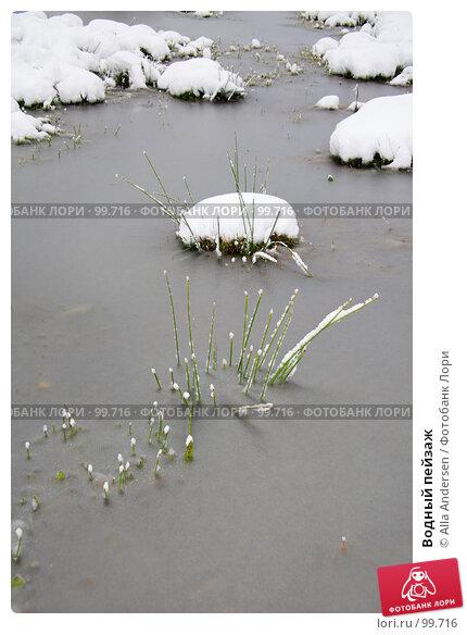 Купить «Водный пейзаж», фото № 99716, снято 16 октября 2007 г. (c) Alla Andersen / Фотобанк Лори