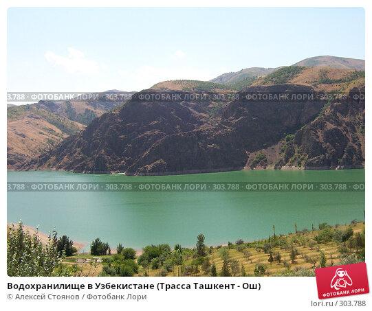 Водохранилище в Узбекистане (Трасса Ташкент - Ош), фото № 303788, снято 1 августа 2005 г. (c) Алексей Стоянов / Фотобанк Лори