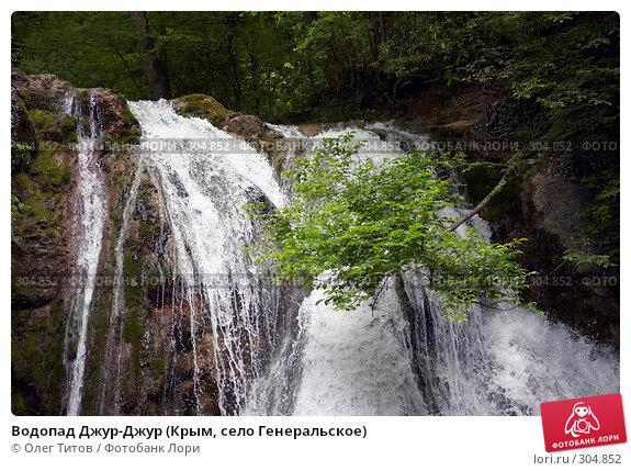 Водопад Джур-Джур (Крым, село Генеральское), фото № 304852, снято 23 мая 2008 г. (c) Олег Титов / Фотобанк Лори