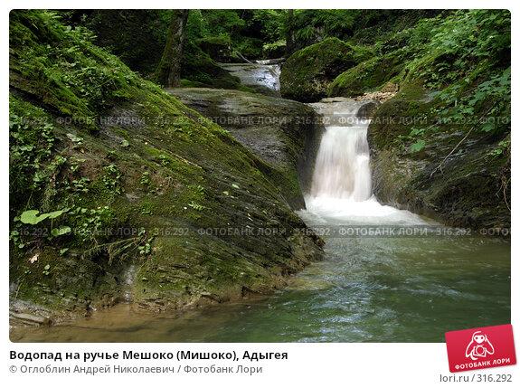 Водопад на ручье Мешоко (Мишоко), Адыгея, фото № 316292, снято 8 июня 2008 г. (c) Оглоблин Андрей Николаевич / Фотобанк Лори