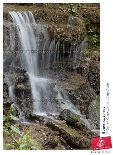 Водопад в лесу, фото № 85652, снято 25 августа 2007 г. (c) Сергей Старуш / Фотобанк Лори