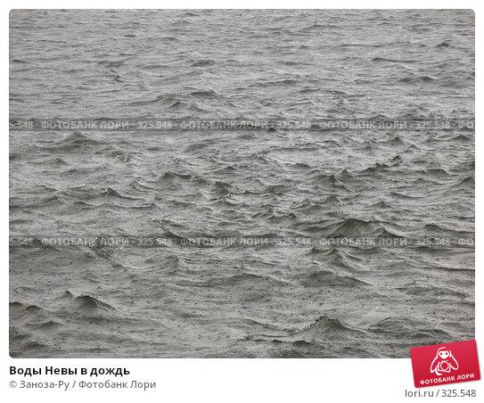 Купить «Воды Невы в дождь», фото № 325548, снято 12 июня 2008 г. (c) Заноза-Ру / Фотобанк Лори