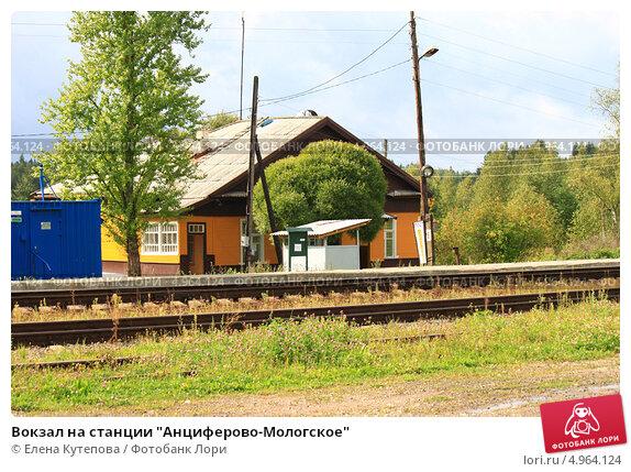 Фото станция анциферово новгородская область