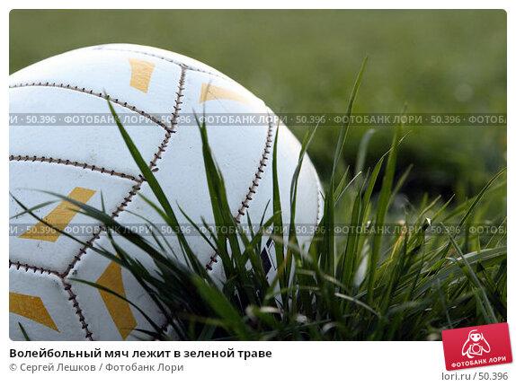 Волейбольный мяч лежит в зеленой траве, фото № 50396, снято 18 мая 2007 г. (c) Сергей Лешков / Фотобанк Лори