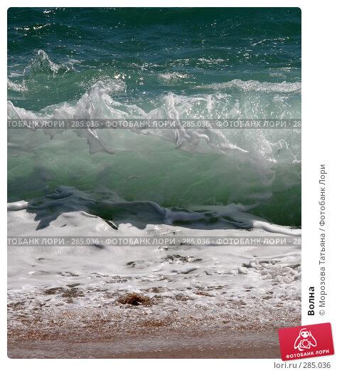 Волна, фото № 285036, снято 21 апреля 2008 г. (c) Морозова Татьяна / Фотобанк Лори