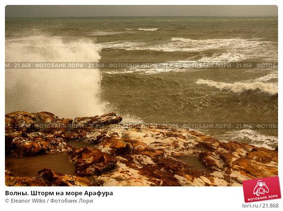 Волны. Шторм на море Арафура, фото № 21868, снято 1 апреля 2007 г. (c) Eleanor Wilks / Фотобанк Лори
