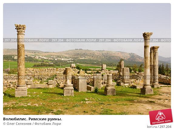 Волюбилис. Римские руины., фото № 297204, снято 25 февраля 2008 г. (c) Олег Селезнев / Фотобанк Лори