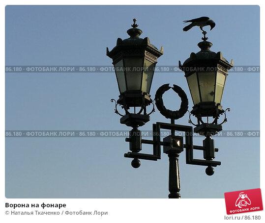 Купить «Ворона на фонаре», фото № 86180, снято 20 апреля 2018 г. (c) Наталья Ткаченко / Фотобанк Лори