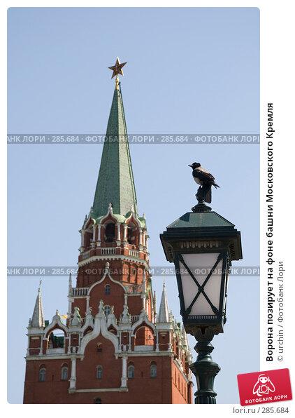 Ворона позирует на фоне башни Московского Кремля, фото № 285684, снято 3 мая 2008 г. (c) urchin / Фотобанк Лори