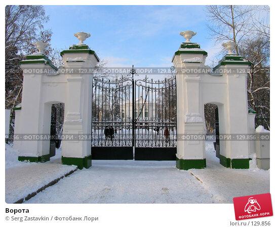 Купить «Ворота», фото № 129856, снято 22 декабря 2004 г. (c) Serg Zastavkin / Фотобанк Лори