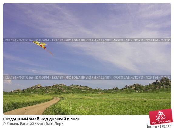 Воздушный змей над дорогой в поле, фото № 123184, снято 27 июня 2017 г. (c) Коваль Василий / Фотобанк Лори