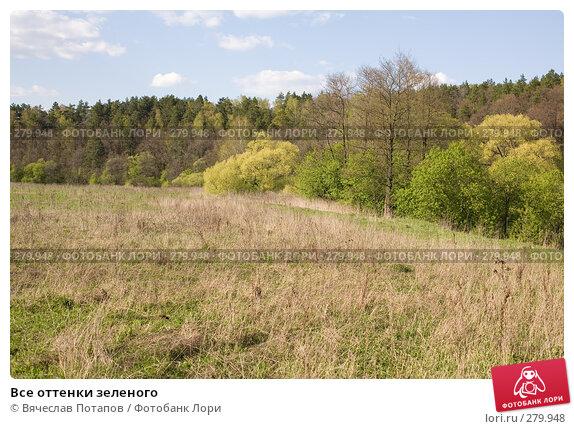 Купить «Все оттенки зеленого», фото № 279948, снято 27 апреля 2008 г. (c) Вячеслав Потапов / Фотобанк Лори