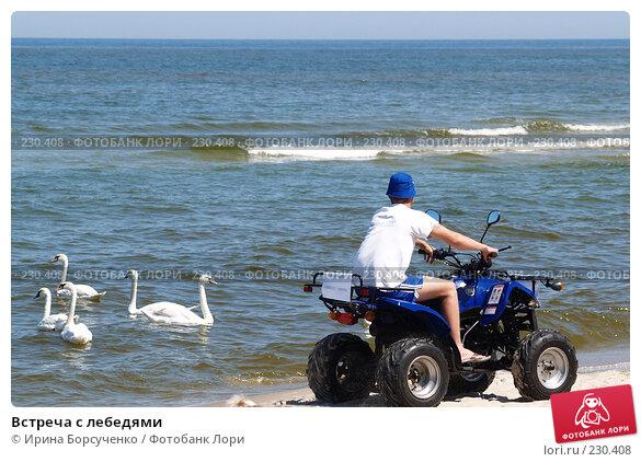 Встреча с лебедями, фото № 230408, снято 9 июня 2007 г. (c) Ирина Борсученко / Фотобанк Лори