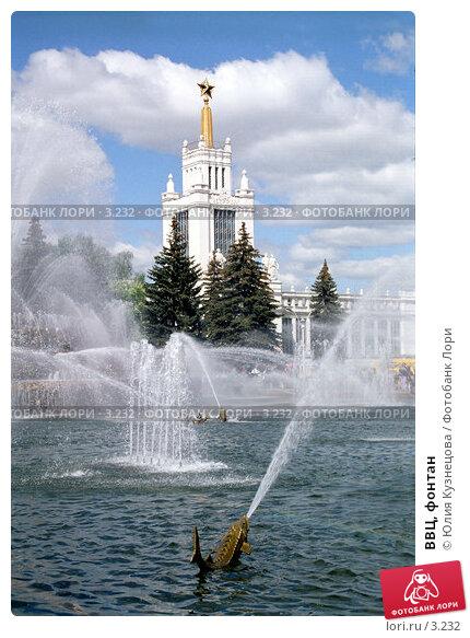 ВВЦ, фонтан, фото № 3232, снято 23 января 2017 г. (c) Юлия Кузнецова / Фотобанк Лори