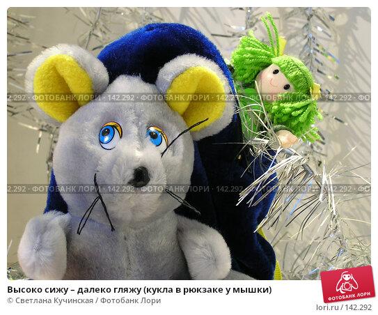Высоко сижу – далеко гляжу (кукла в рюкзаке у мышки), фото № 142292, снято 21 июля 2017 г. (c) Светлана Кучинская / Фотобанк Лори