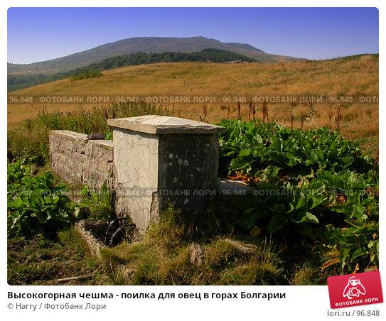 Высокогорная чешма - поилка для овец в горах Болгарии, фото № 96848, снято 24 августа 2007 г. (c) Harry / Фотобанк Лори