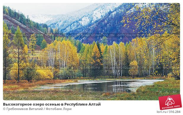 Купить «Высокогорное озеро осенью в Республике Алтай», фото № 316284, снято 22 апреля 2018 г. (c) Гребенников Виталий / Фотобанк Лори