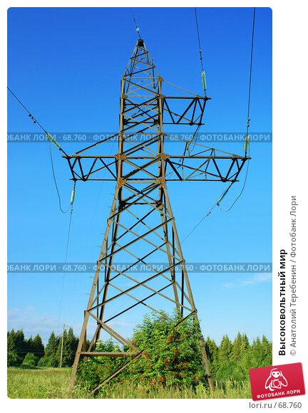 Купить «Высоковольтный мир», фото № 68760, снято 29 июня 2007 г. (c) Анатолий Теребенин / Фотобанк Лори