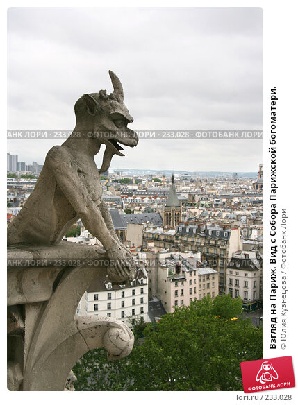 Взгляд на Париж. Вид с Собора Парижской богоматери., фото № 233028, снято 7 мая 2007 г. (c) Юлия Кузнецова / Фотобанк Лори