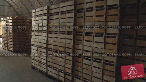 Warehouse with wooden boxes. Стоковое видео, видеограф Kozub Vasyl / Фотобанк Лори