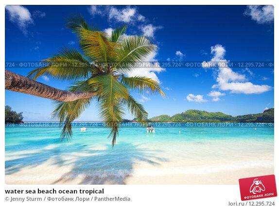 Купить «water sea beach ocean tropical», фото № 12295724, снято 21 марта 2019 г. (c) PantherMedia / Фотобанк Лори
