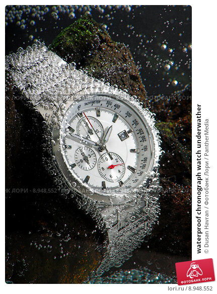 Купить «waterproof chronograph watch underwather», фото № 8948552, снято 14 декабря 2019 г. (c) PantherMedia / Фотобанк Лори