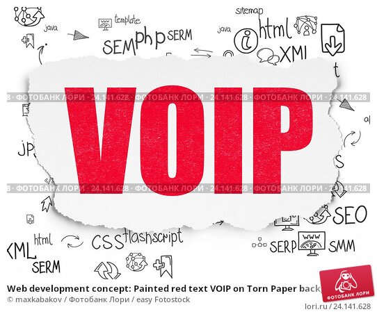 a paper on voice over ip
