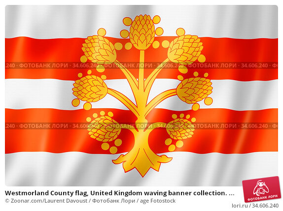 Westmorland County flag, United Kingdom waving banner collection. ... Стоковое фото, фотограф Zoonar.com/Laurent Davoust / age Fotostock / Фотобанк Лори