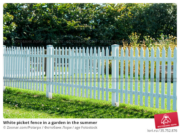 White picket fence in a garden in the summer. Стоковое фото, фотограф Zoonar.com/Polarpx / age Fotostock / Фотобанк Лори