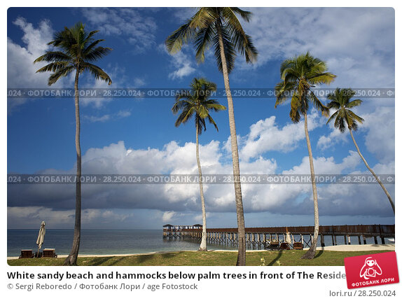 Купить «White sandy beach and hammocks below palm trees in front of The Residence Hotel at the Indian Ocean Zanzibar Tanzania.», фото № 28250024, снято 10 января 2018 г. (c) age Fotostock / Фотобанк Лори