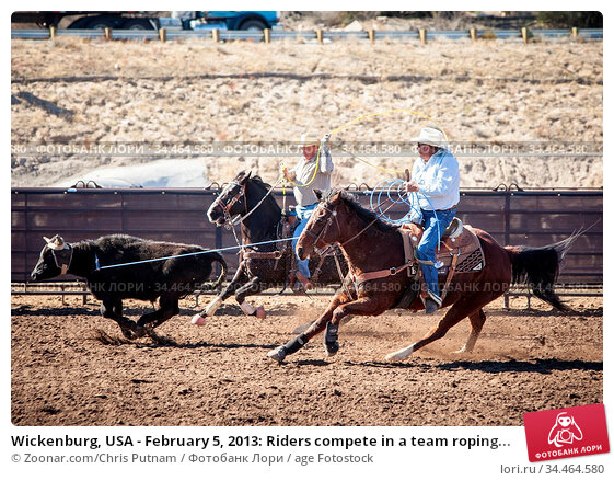 Wickenburg, USA - February 5, 2013: Riders compete in a team roping... Стоковое фото, фотограф Zoonar.com/Chris Putnam / age Fotostock / Фотобанк Лори