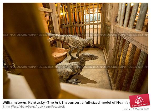 Купить «Williamstown, Kentucky - The Ark Encounter, a full-sized model of Noah's Ark built by the fundamentalist Christian group, Answers in Genesis. Displays...», фото № 25637852, снято 18 января 2017 г. (c) age Fotostock / Фотобанк Лори