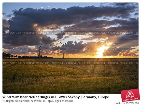 Wind farm near Neuharlingersiel, Lower Saxony, Germany, Europe. Стоковое фото, фотограф Jürgen Wackenhut / age Fotostock / Фотобанк Лори