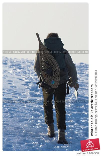 Купить «winter cold hike arctic trappers», фото № 8056508, снято 21 марта 2019 г. (c) PantherMedia / Фотобанк Лори