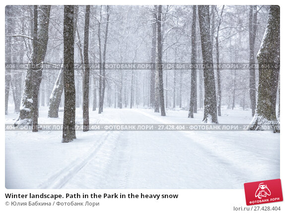 Купить «Winter landscape. Path in the Park in the heavy snow», фото № 27428404, снято 22 января 2018 г. (c) Юлия Бабкина / Фотобанк Лори