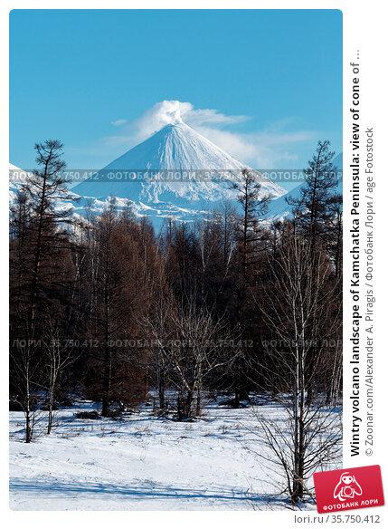 Wintry volcano landscape of Kamchatka Peninsula: view of cone of ... Стоковое фото, фотограф Zoonar.com/Alexander A. Piragis / age Fotostock / Фотобанк Лори