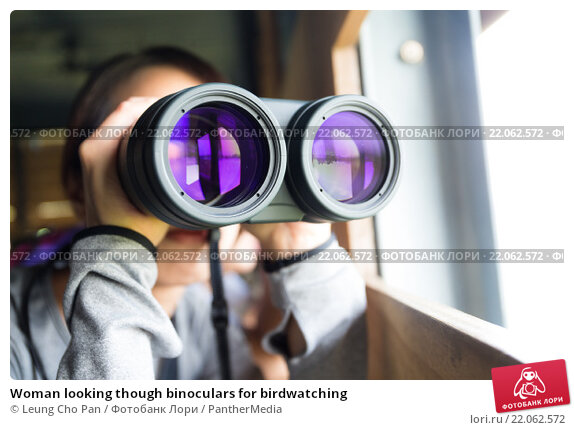 Купить «Woman looking though binoculars for birdwatching», фото № 22062572, снято 18 апреля 2019 г. (c) PantherMedia / Фотобанк Лори