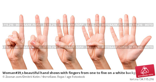 Купить «Woman#39,s beautiful hand shows with fingers from one to five on a white background.», фото № 34115216, снято 11 июля 2020 г. (c) age Fotostock / Фотобанк Лори