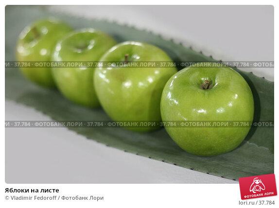 Яблоки на листе, фото № 37784, снято 26 апреля 2007 г. (c) Vladimir Fedoroff / Фотобанк Лори