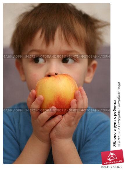 Яблоко в руках ребенка, фото № 54072, снято 1 декабря 2006 г. (c) Останина Екатерина / Фотобанк Лори