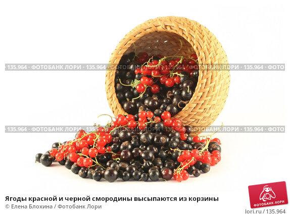 Ягоды красной и черной смородины высыпаются из корзины, фото № 135964, снято 1 июля 2007 г. (c) Елена Блохина / Фотобанк Лори