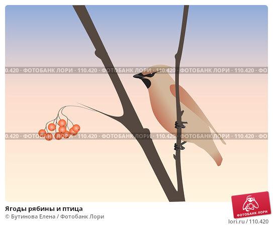 Ягоды рябины и птица, иллюстрация № 110420 (c) Бутинова Елена / Фотобанк Лори