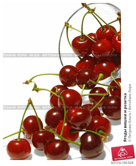 Купить «Ягоды вишни и розетка», фото № 60024, снято 24 июня 2007 г. (c) Петрова Ольга / Фотобанк Лори