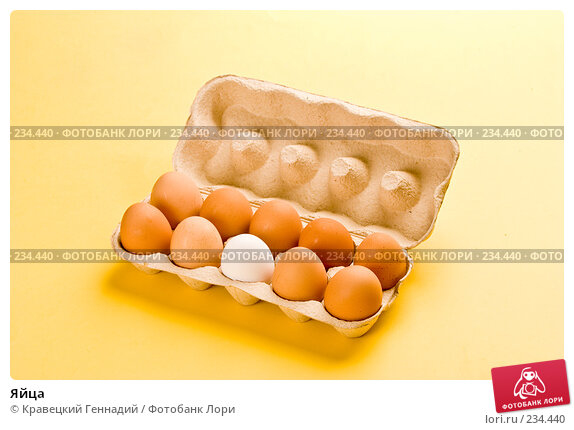 Яйца, фото № 234440, снято 24 октября 2016 г. (c) Кравецкий Геннадий / Фотобанк Лори