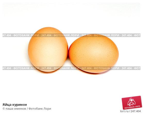 Яйца куриное, фото № 247404, снято 14 сентября 2007 г. (c) паша семенов / Фотобанк Лори