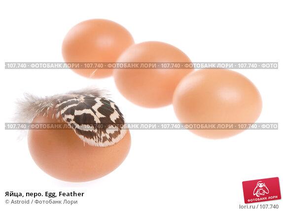Яйца, перо. Egg, Feather, фото № 107740, снято 5 января 2007 г. (c) Astroid / Фотобанк Лори