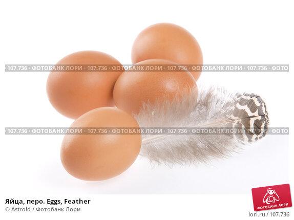 Яйца, перо. Eggs, Feather, фото № 107736, снято 5 января 2007 г. (c) Astroid / Фотобанк Лори