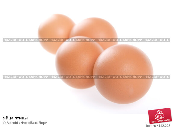 Яйца птицы, фото № 142228, снято 5 января 2007 г. (c) Astroid / Фотобанк Лори