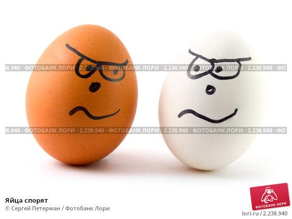 Купить «Яйца спорят», фото № 2238940, снято 22 сентября 2009 г. (c) Сергей Петерман / Фотобанк Лори